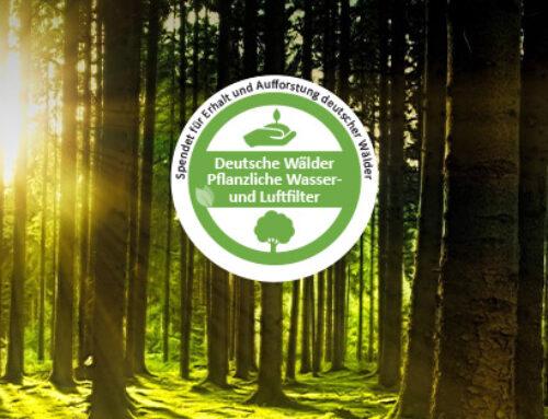 170.000 neue Bäume für bessere Luft in Städten